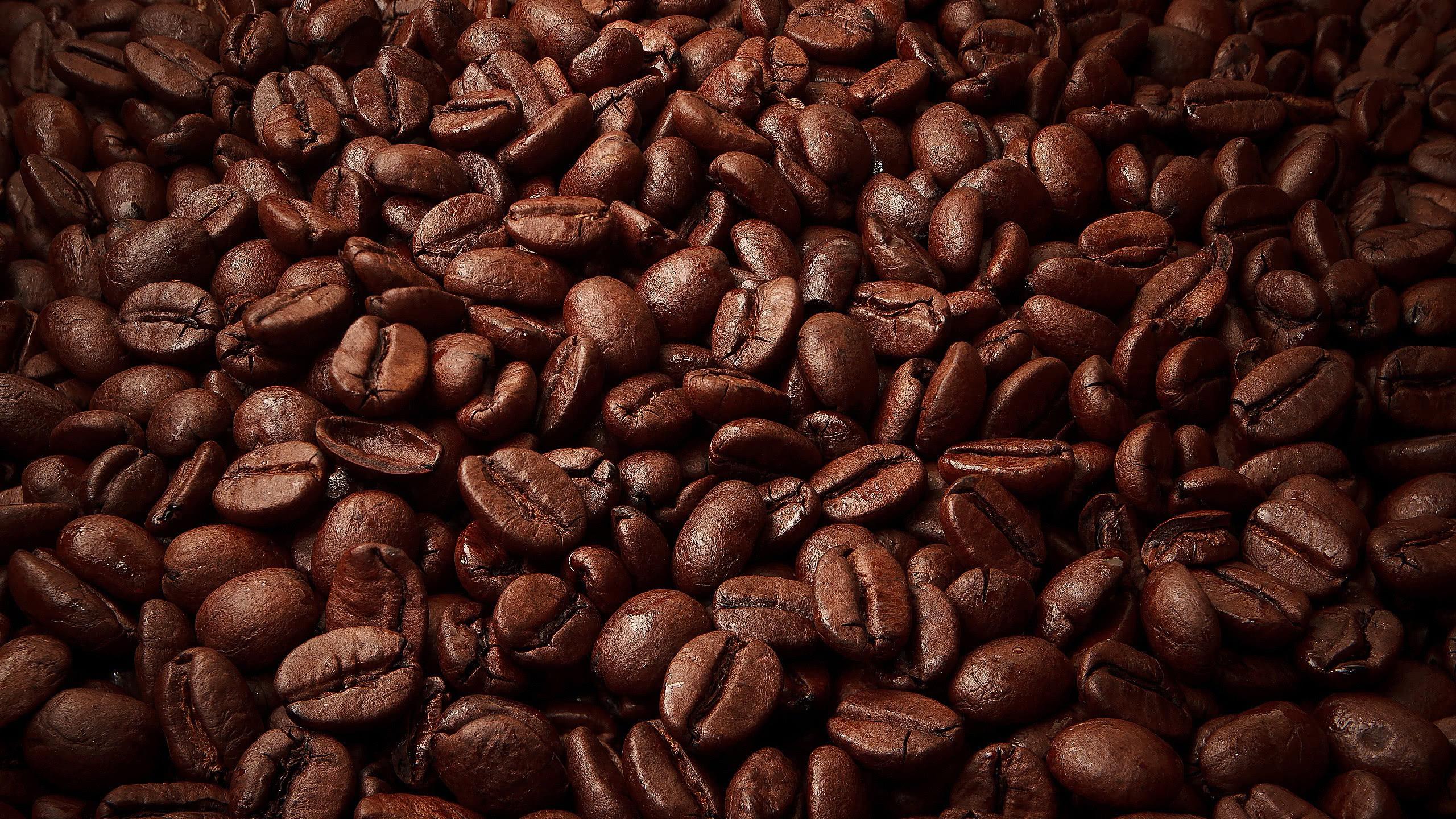 coffee beans wqhd 1440p wallpaper