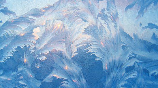 frost on window wqhd 1440p wallpaper