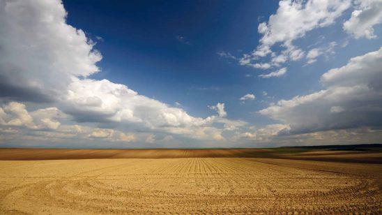 grain field vojvodina serbia wqhd 1440p wallpaper
