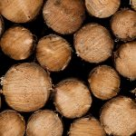 wood logs uhd 4k wallpaper